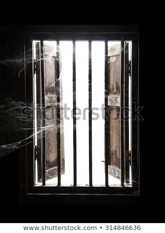 Velho windows projeto vidro verde Foto stock © Nneirda