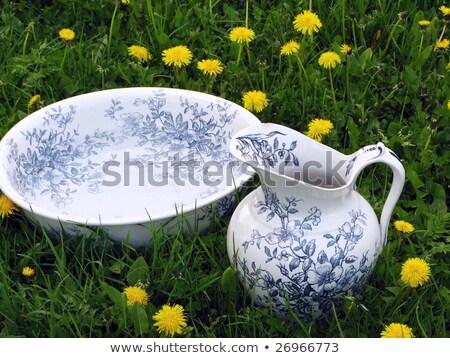 Antique wash basin and water jug  Stock photo © marimorena