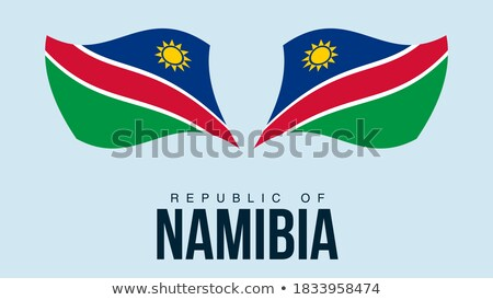 Mapa bandera botón república Namibia vector Foto stock © Istanbul2009