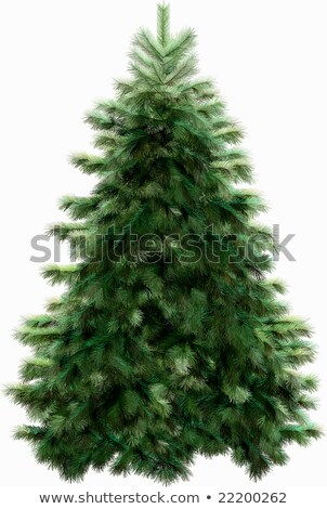 Digitálisan generált zöld fenyőfa fehér Stock fotó © wavebreak_media