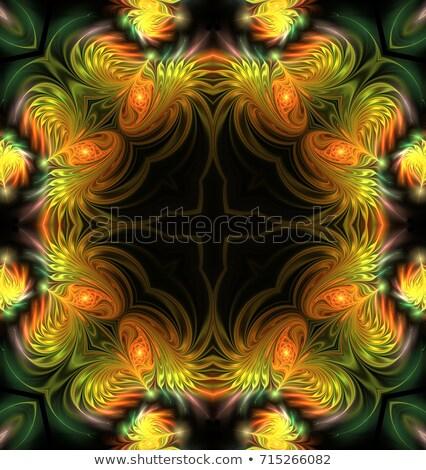 fractal illustration background frame with gold satin feathers s Stock photo © yurkina