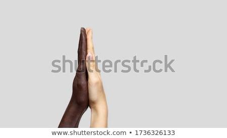 Rassischen Einheit Symbol Rassismus Gesellschaft weiß Stock foto © Lightsource