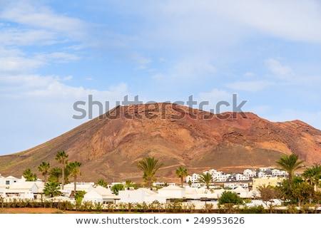 Palmboom gebouw landschap Blauw plant Europa Stockfoto © meinzahn