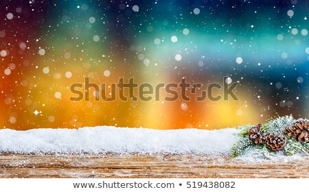 Spotlight and night snowfall Stock photo © mahout