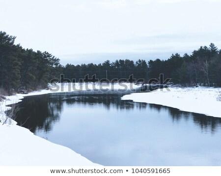Renkli kış gün batımı orman nehir güzel Stok fotoğraf © Taiga
