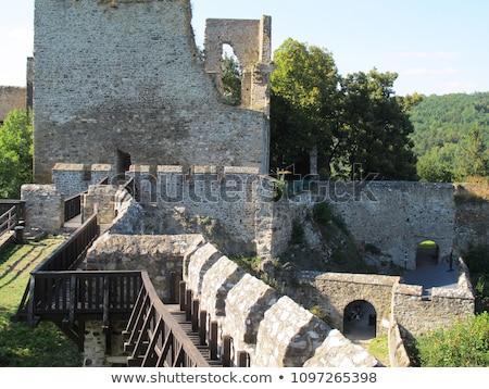 ruins of cornstejn castle with vranovska dam czech republic stock photo © phbcz