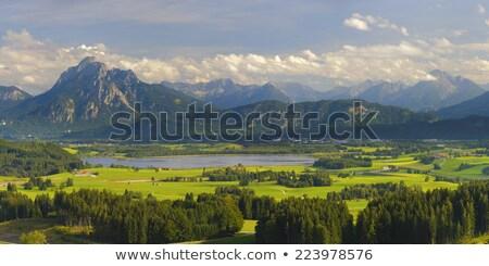 мнение Альпы горные крест спортивных деревья Сток-фото © kb-photodesign
