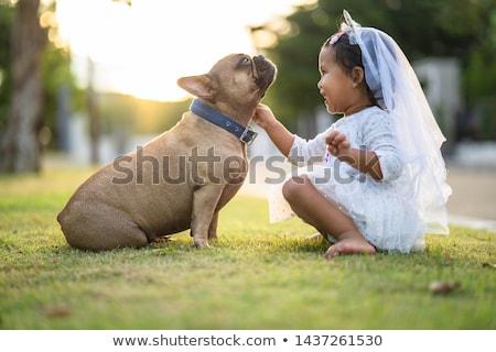beautiful girl with french bulldog stock photo © svetography