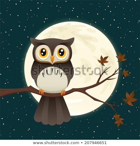 Cute chouette clair de lune illustration bleu Photo stock © adrenalina