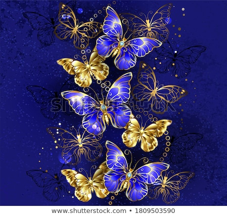Blue background with sapphire butterfly Stock photo © blackmoon979