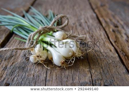 Tavasz hagyma saláta köteg újhagyma friss Stock fotó © Digifoodstock