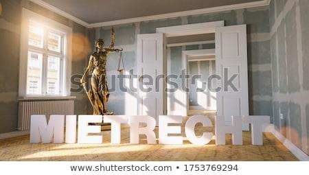 3D · woord · rechter · hamer · juridische · rechter - stockfoto © mazirama