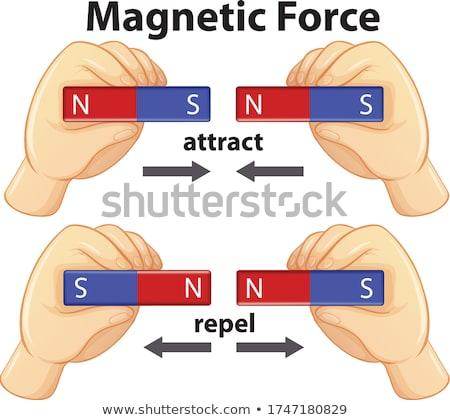 Mani magnete illustrazione settentrionale meridionale polo Foto d'archivio © lenm