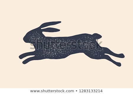 Hare, rabbit. Vintage logo, retro print, poster for Butchery Stock photo © FoxysGraphic