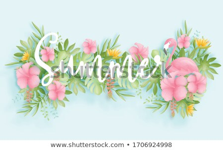 hello summer banner of 3d paradise bird flower stock photo © cienpies