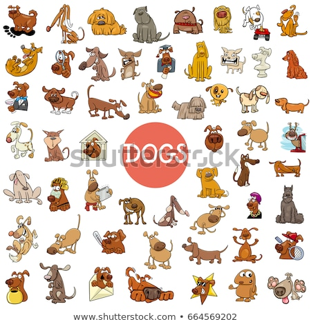 funny dog cartoon characters large set Stock photo © izakowski