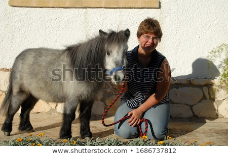 Falabella miniature horse and girl Stock photo © cynoclub