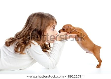 Brunette profile girl with dog puppy mini pinscher Stock photo © lunamarina