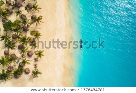 Palmboom boten zonsondergang tropisch eiland zee palm Stockfoto © travelphotography