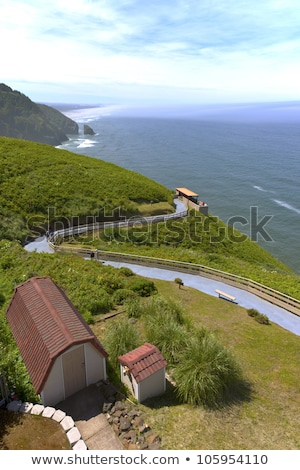 Oregon coast at sealions cove. Stock photo © Rigucci