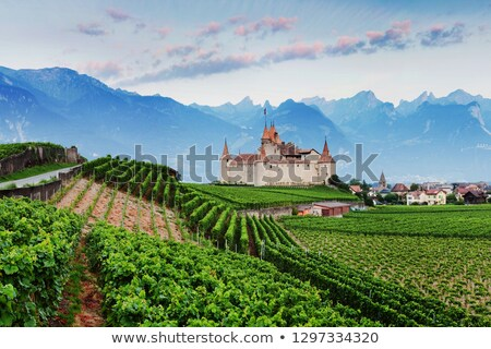 Kasteel Zwitserland huis zomer groene vlag Stockfoto © mariephoto
