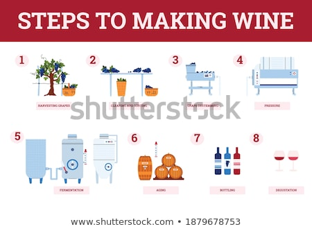 harvesting grapes cleaning process stock photo © abbphoto