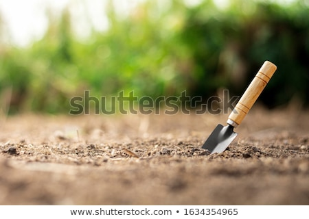Shovel in the ground Stock photo © deomis