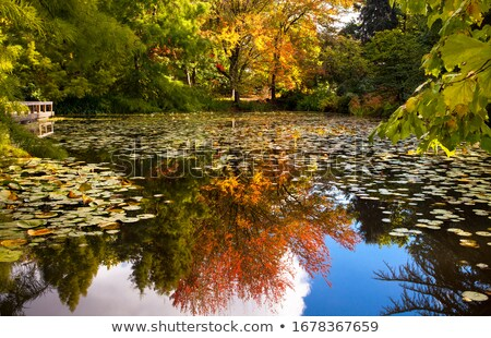 couleurs · d'automne · calme · crique · parc · Iowa - photo stock © billperry