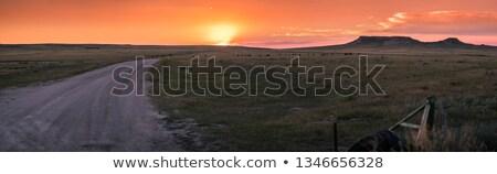 Snelweg Wyoming woestijn lege lang natuur Stockfoto © CaptureLight