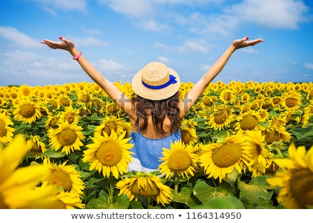 young woman with sunflower in sunflower field stock photo © belahoche