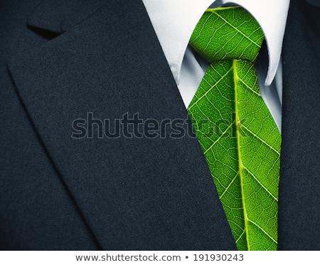 kravat · genç · bakıyor · kravat · takım · elbise · siyah - stok fotoğraf © filipw