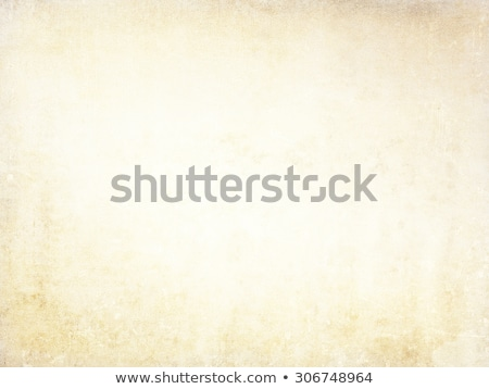 Grunge Paper Background And Texturefor Your Design ストックフォト © ilolab