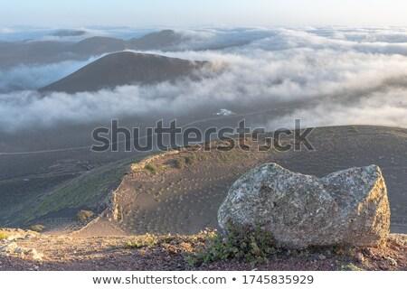 vulkaan · boom · landschap · berg · rook · Blauw - stockfoto © meinzahn