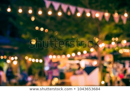 garden · party · meubles · chaises · table · jardin - photo stock © tilo