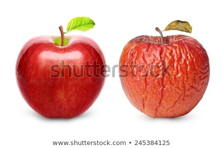 Old red rotten apple. Stock photo © justinb