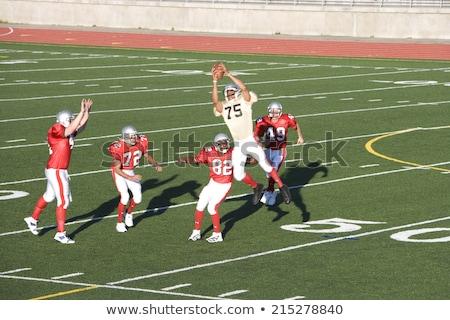 American football player in mid-air Stock photo © wavebreak_media