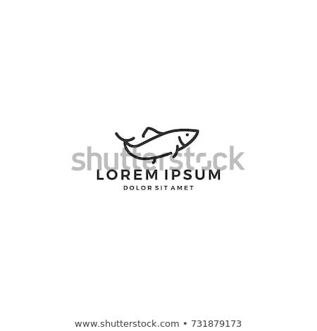 Stock photo: Salmon lineart