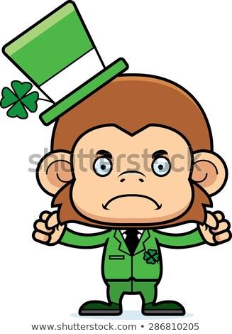 Karikatür öfkeli İrlandalı maymun bakıyor Stok fotoğraf © cthoman