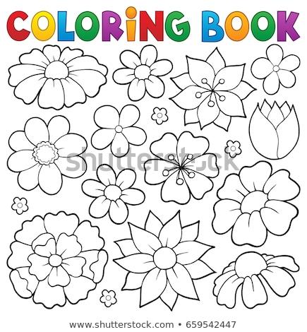 Boyama Kitabi Bahar Cicekleri Konu Cicek Bahar Kitap