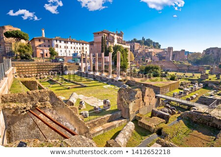 Ancient Rome Forum Romanum and Palatine hill scenic view Stock photo © xbrchx