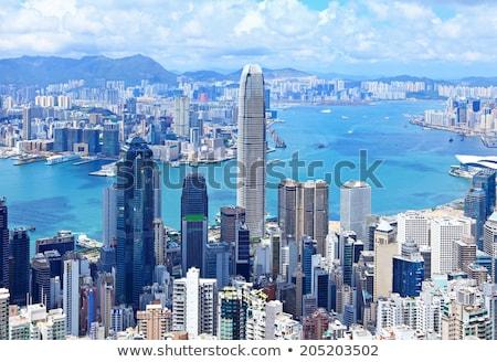 Hong Kong view from top of victoria park Stock photo © galitskaya