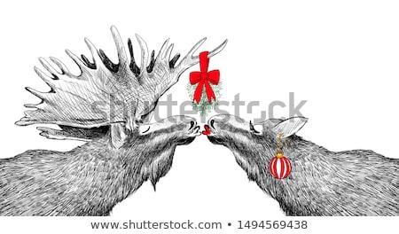 Natal beijando visco dois árvore de natal olho Foto stock © robStock
