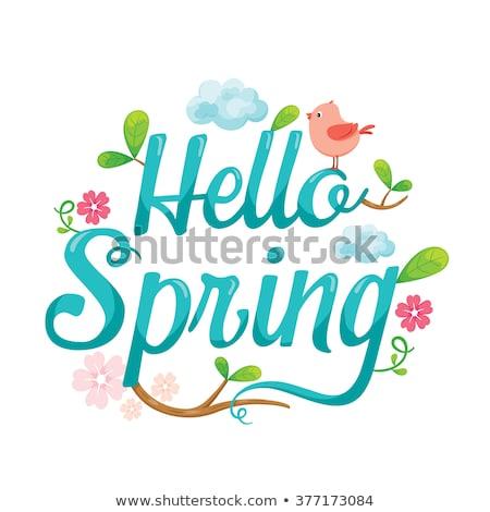 Hello spring cartoon lettering Stock photo © barsrsind