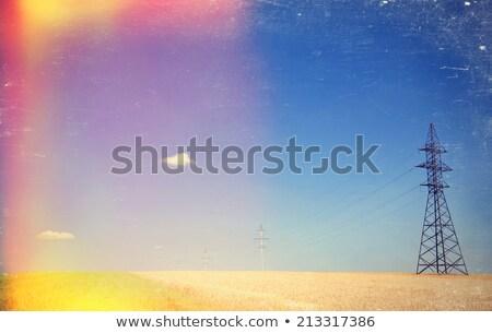 электрические · чистой · Панорама · Blue · Sky · пшеницы - Сток-фото © massonforstock