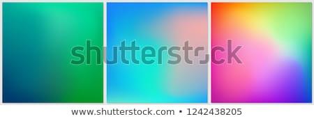 Resumen establecer moderna fluido tres colores Foto stock © SArts