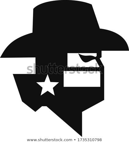 Haydut maske Teksas bayrak harita Stok fotoğraf © patrimonio