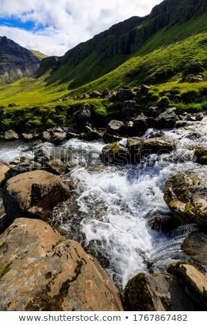 быстро · горные · реке · воды · рок - Сток-фото © Imagecom