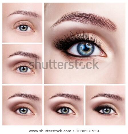 нормальный · глаза · видение · ярко · синий · глазах - Сток-фото © adrian_n