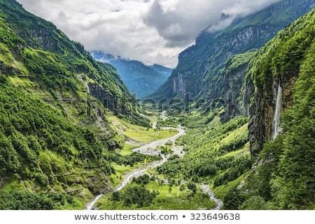 Mountain Valley from above Stock photo © wildnerdpix