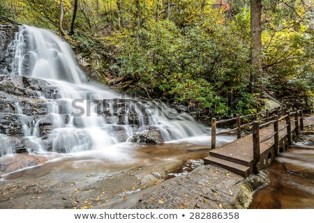 Waterfall in Smoky Mountains Stock photo © benkrut